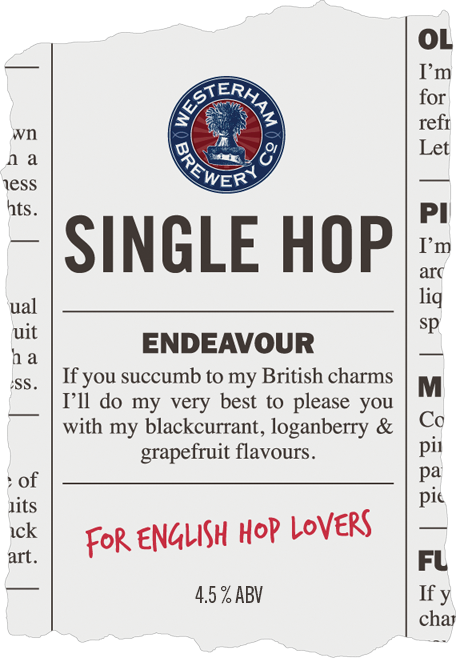 Single Hop: Endeavour pump clip